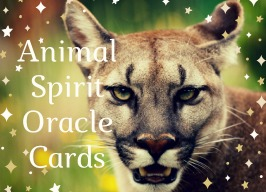 Animal Oracles ~ with Wendy Fouts 7pm