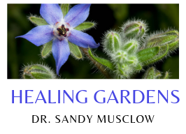 Healing Gardens ~ with Dr. Sandy Musclow