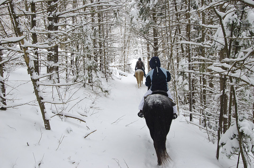 Winter Horseback Excursion at Grail Springs